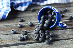 Blueberries in cup on a blue wooden background Royalty Free Stock Images