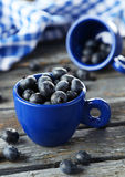 Blueberries in cup on blue wooden background. Stock Image
