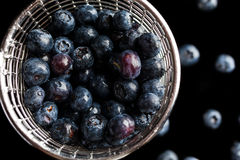 Blueberries in cup strainer from above Royalty Free Stock Images