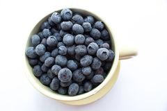 Blueberries. In a cup on white background Royalty Free Stock Images