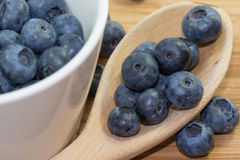 Blueberries in cup on wooden background. Blueberries in white pot with wooden spoon close up stock images