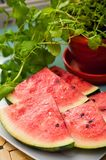 Watermelon slices and mint  Stock Photos