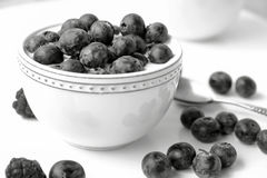 Blueberries dessert with yougurt in a bowl. Blueberries and raspberries in a white bowl on a table Stock Images