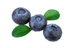 Blueberries diagonal composition isolated. On white stock images