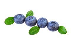 Blueberries Diagonal Composition. Isolated on White royalty free stock images