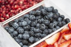 Blueberries in a Dish. Photograph of blueberries in a plastic dish stock image