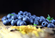 Blueberries with drops of water Stock Image