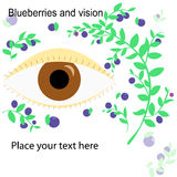 Blueberries and eye Stock Images