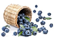 Blueberries fall of the basket. Royalty Free Stock Images
