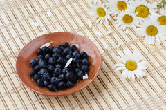 Blueberries and flowers. Blueberries and camomile on a table Stock Photo