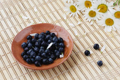 Blueberries and flowers. Blueberries and camomile on a table Royalty Free Stock Photography