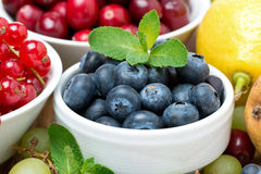Blueberries, fresh berries and fruits, close-up Stock Photo