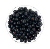 Blueberries Fresh Picked Top Royalty Free Stock Image