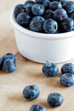 Blueberries. Fresh blueberries spilling from a dish onto a wooden surface Royalty Free Stock Image
