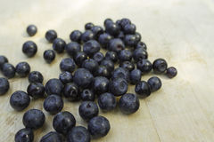 Blueberries. Fresh blueberries which have been picked up in Finnish forest. Picture shot July 2014 Royalty Free Stock Photos