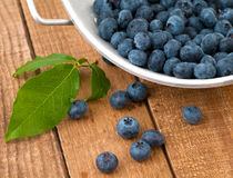 Blueberries Freshly Picked, Washed on Rustic Wood Royalty Free Stock Images