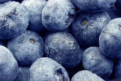 Blueberries Fruit Royalty Free Stock Images