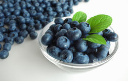 Blueberries Fruit Bowl Stock Image