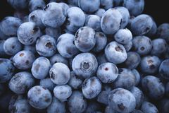 Blueberries, Fruit, Food, Berries Stock Photography