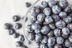 Blueberries in glass bowl. Fresh blueberry fruit in glass bowl royalty free stock image