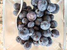 Blueberries in a glass bowl and spoon for breakfast stock photo
