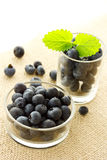Blueberries in glass containers Royalty Free Stock Images