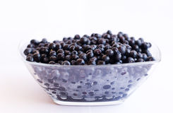 Blueberries in glass cup. On isolated background Stock Photo