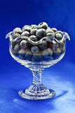 Blueberries in glass dessert bowl Stock Images