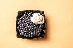 Blueberries in sour cream, a glass plate, on an orange background royalty free stock photo