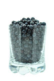 Blueberries in a glass Stock Photos