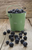 Blueberries in a green bucket Royalty Free Stock Photography
