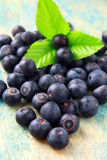 Blueberries with a green leaf Stock Photos