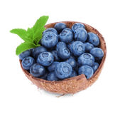 Blueberries and green leaves in a coconut shell. Pretty blueberries isolated on a white background. Refreshig summer fruits. Royalty Free Stock Images