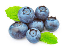 Blueberries with green leaves Stock Photography