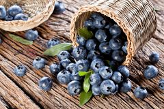 Blueberries have dropped from the basket Royalty Free Stock Photo