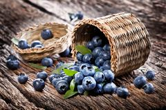 Blueberries have dropped from the basket Royalty Free Stock Images
