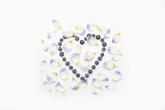 Blueberries heart with petals from above on white in centre Stock Images