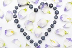 Blueberries heart with petals from above on white Stock Image