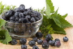 Blueberries - horizontal Royalty Free Stock Image