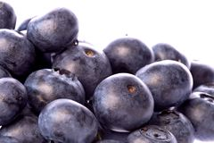 Blueberries Isolated Stock Photos
