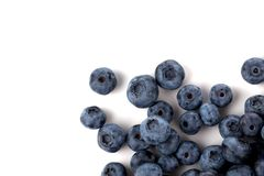 Blueberries isolated close up Royalty Free Stock Photos