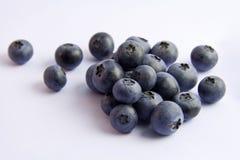 Blueberries isolated on white Stock Photos