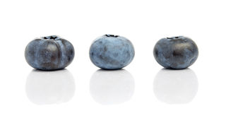 Blueberries Isolated on White Background Royalty Free Stock Images