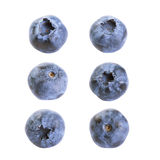 Blueberries isolated on white Royalty Free Stock Image
