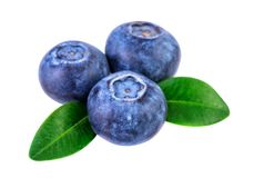 Blueberries isolated on white with clipping path royalty free stock photos