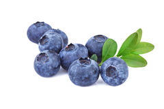 Blueberries isolated on white Royalty Free Stock Photos