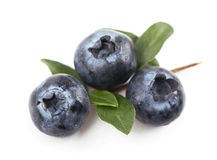 Blueberries,. Isolated white Stock Photography