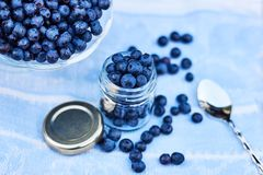 Fresh forest blueberries in a opened jar, raw organic dessert concept. Blueberries in a jar and a bowl and scattering around on linen blue fabric royalty free stock image
