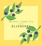 Blueberries label. Background for design of packing Stock Photography