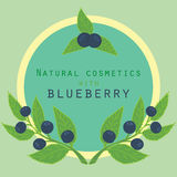Blueberries label. Royalty Free Stock Images